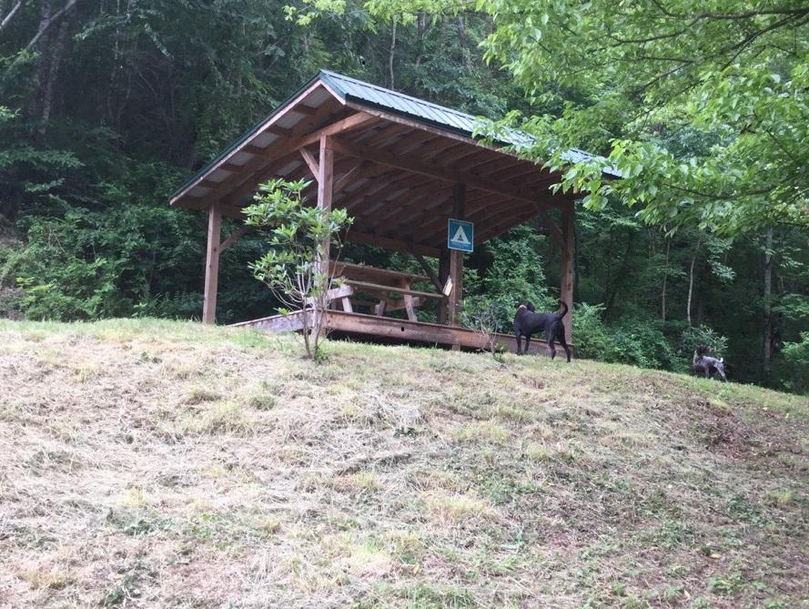 BigPine_campsite-2017