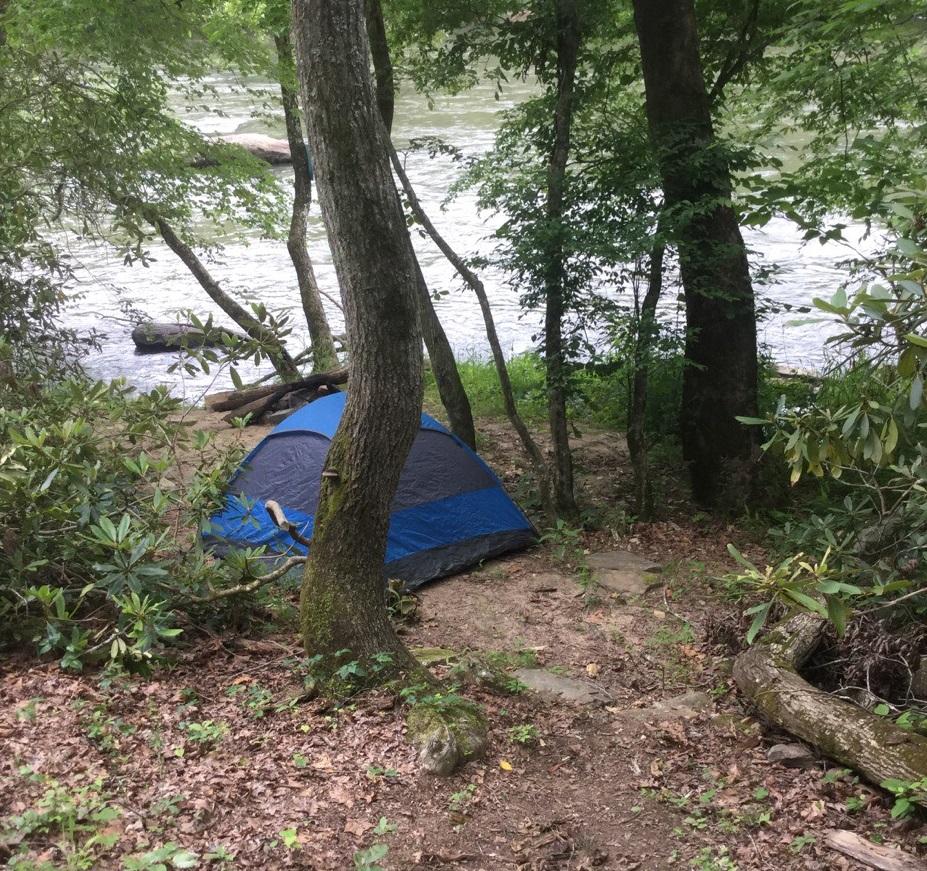 IvyRiver_campsite_2017